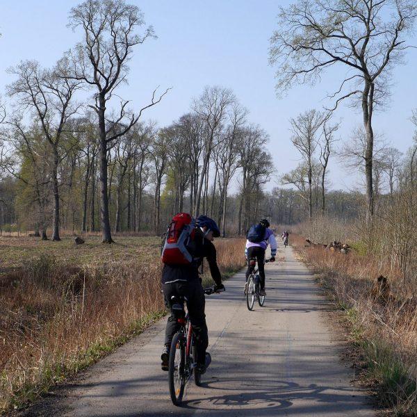 Radfahren auf der Thayarunde